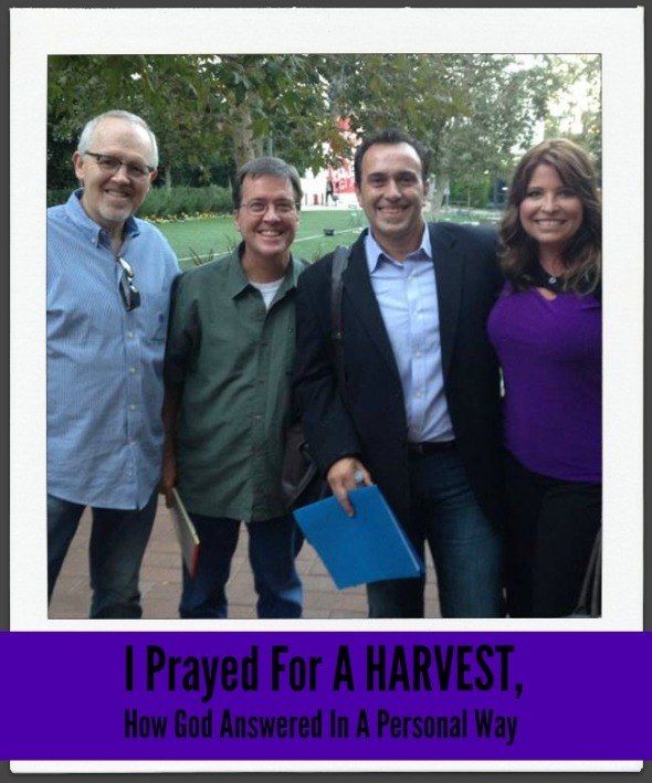 I Prayed For A Harvest, How God Answered In A Personal Way